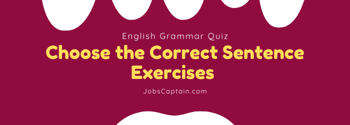 Choose the Correct Sentence Exercises
