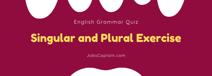singular and plural exercises